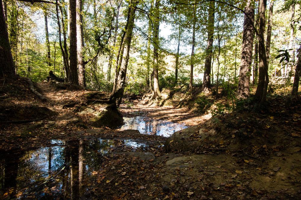 Zonolite Trail in North Druid Hills, GA
