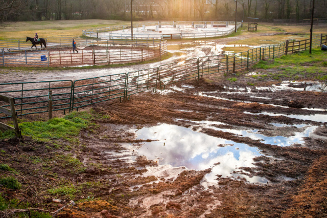 Little Creek Horse Farm and Park in Scottdale, GA